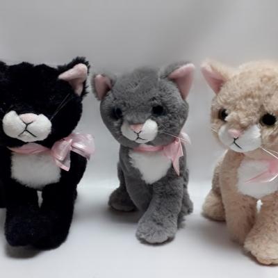 Котики мутонові