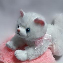 Котик белый персидский