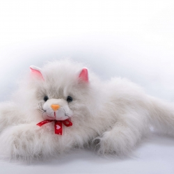 Котик лежачий