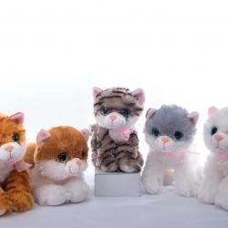 Котики асорті