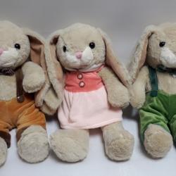 Кролик в одязі